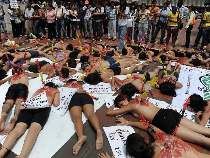 protesto, touradas, colômbia,